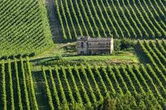 [ Marches (Italy) – Farm With Vineyard, Near Ancona At Summer Cuenca Spain, Summer Landscape, Italy Landscape, Como Italy, Types Of Wine, Country Landscaping, Italian Wine, Aerial View, Countryside