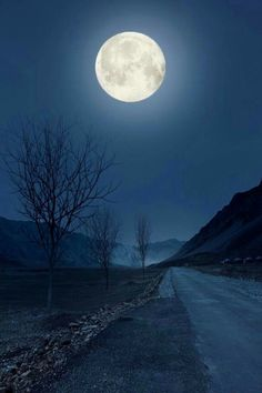 The moon shines bright, but you know there are places where the darkness lingers. Stars Night, Good Night Moon, Stars And Moon, Ciel Nocturne, Moon Photos, Full Moon Pictures, Moon Dance, Shoot The Moon, Moon Photography