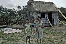 Misquito - Indígenas de Guatemala y parte de Honduras de la Costa de los Mosquitos, litoral Caribe. Los misquitos (o miskitos) son un grupo étnico indígena de Centroamérica, cuyo idioma nativo pertenece a la familia de lenguas misumalpas, que hacen parte de grupo lenmichí de las lenguas Macro-chibchas. Su territorio, que se extiende desde Cabo Camarón en Honduras hasta más al Sur del Río Grande de Matagalpa en Nicaragua, permaneció aislado de la conquista española.