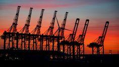 """Wirtschaftskrise """"Das wird ein Zangenangriff auf Deutschlands Wohlstand"""" Deutschland fährt wieder hoch - doch die erhoffte schnelle Erholung wird ausbleiben, warnt Ökonom Gabriel Felbermayr: """"Wir müssen unsere Prognosen revidieren. Wir sind zu tief gefallen."""" Sailing Ships, Utility Pole, Boat, Gabriel, Corona, Exponential Growth, Battle Cry, Internet Safety, Dinghy"""