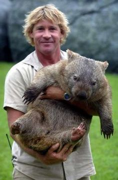 Steve Irwin and a Wombat love him and love these creatures! Bucket list: australia, meet a wombat:) Mon Zoo, Animals Beautiful, Cute Animals, Fluffy Animals, Irwin Family, Crocodile Hunter, The Wombats, All Nature, Mundo Animal