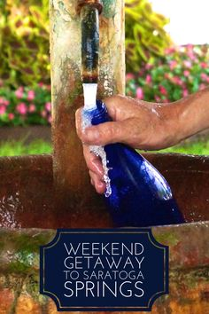 What to do on the perfect weekend getaway from New York City-- Saratoga Springs. Travel here to shop, drink mineral waters, enjoy the equestrian culture and grab an awesome dog.