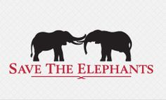 Save The Elephants - Hong Kongs Ivory More Items For Sale Than In Any Other City In The World