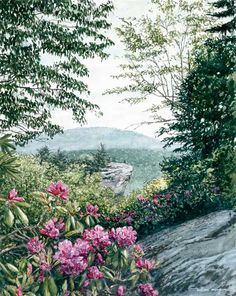 William Mangum mountain paintings
