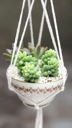 DIY Tea Cup Planter : Have a spare tea cup lying around? With a little string and just 10 knots, you can turn it into a stunning planter. Have a spare tea cup lying around? With a little string and just 10 knots, you can turn it into a stunning planter. Diy Crafts Hacks, Diy Home Crafts, Plant Crafts, Tea Cup Planter, Diy Para A Casa, Macrame Wall Hanging Diy, Macrame Plant Hanger Diy, Macrame Mirror, Macrame Curtain