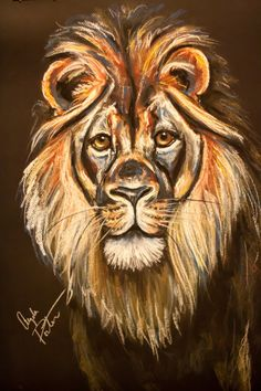 Original Chalk Pastel Lion Drawing The King by AngelaPorterArt, $100.00
