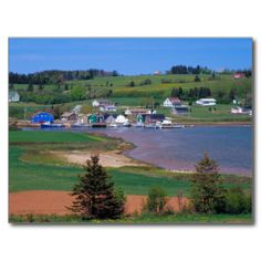 >>>Low Price Guarantee          	N.A. Canada, Prince Edward Island. Boats are Postcard           	N.A. Canada, Prince Edward Island. Boats are Postcard This site is will advise you where to buyShopping          	N.A. Canada, Prince Edward Island. Boats are Postcard lowest price Fast Shipping a...Cleck link More >>> http://www.zazzle.com/n_a_canada_prince_edward_island_boats_are_postcard-239566810532572552?rf=238627982471231924&zbar=1&tc=terrest