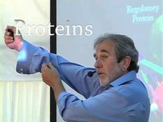 Bruce Lipton The Biology of Belief Full Lecture - YouTube. Bruce explains appart of many other interesting research that only 5% of our day we live consious and aware and points out the importance of mindfuless.