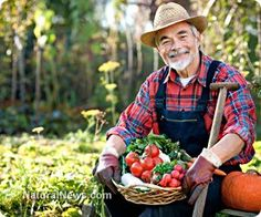How Old is Old? - Love, Home, and Health www.lovehomeandhealth.com Age doesn't really have anything to do with the number of birthdays we've had.  Did you know that?  Our real age is determined by the condition of our bodies, inside and out.    How Old is Old?  ...       today's blog
