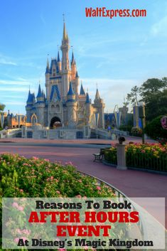 Top Reasons to Book