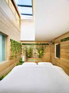 Emperor Qianmen Hotel / asap - timber room with green wall planters