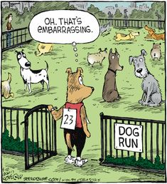 "Dave Coverly, the creative mind behind this one-panel comic strip, says Speed Bump depicts the ""movie of life. Funny Dog Jokes, Funny Animal Memes, Funny Cartoons, Funny Signs, Funny Comics, Funny Animals, Funny Memes, Hilarious, Animal Humor"