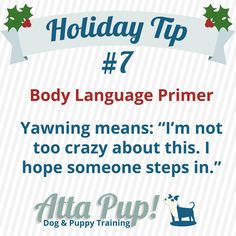 Atta Pup Training Blog: Holiday Tip #7  Sometimes dogs yawn when they're tired. Often, dogs yawn when they are uncomfortable. Here's a video of a stress yawn- how many other stress signals can you spot? https://www.youtube.com/watch?v=8DHLxKDDcXw