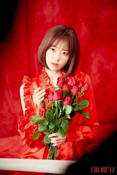 Miyawaki Sakura la vie in rose