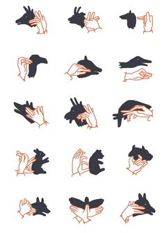hand shadows / shadow puppet show - illustration camille chauchat Shadow Art, Shadow Play, Diy For Kids, Cool Kids, Shadow Puppets With Hands, Hand Shadows, Shadow Theatre, Puppet Show, Sign Language