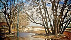 The boardwalk in February