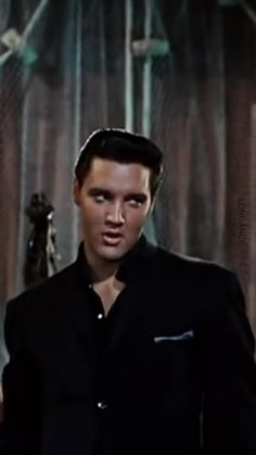 Hollywood Icons, Golden Age Of Hollywood, Old Hollywood, King Elvis Presley, Elvis Presley Photos, Lee Min Ho Photos, Classy People, Old Video, Vinyl Shirts