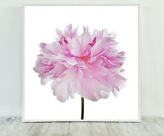 Peony Print Pink Printable Peony Art Flower by CristylClear