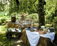 Buffet for a summer party
