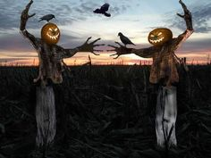 love scarecrows and scary  things