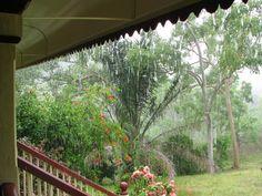 My Dry Tropics Garden: The Rain! ... The Rain! ... My Favourite Summer Smell!