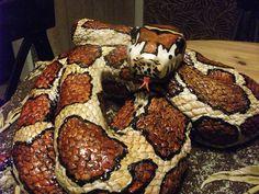 Eric Snake Cake (with added tongue!!)