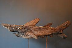 Marcel Dijker - shark