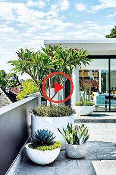 Moderne Bepflanzung und scharfe Linien verleihen dieser Dachterrasse und dem Garten eine zeitgemäße Ausstrahlung. Modern Backyard Design, Terrace Garden Design, Rooftop Terrace, Backyard Designs, Modern Planting, Oasis, Woodworking Items That Sell, Side Yard Landscaping, Low Maintenance Garden