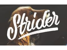 Strider type design hand lettering