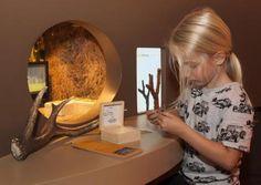 Natuurmuseum Brabant in Tilburg
