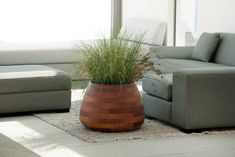 Designed by Haldane Martin, the Tuber is crafted from Iroko wood – a durable African timber often used for boat building, flooring and outdoor-furniture. Individual pieces of Iroko are bolted together with stainless s. Planter Liners, Self Watering Plants, Concrete Art, Landscape Architecture, Potted Plants, Decorative Accessories, Wood Crafts, Natural Wood, Flora
