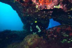 Cyprus Vera k Diving Site