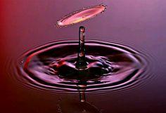 Gota roja