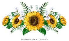 Find Sunflowers Bouquet Wild Flower Isolated stock images in HD and millions of other royalty-free stock photos, illustrations and vectors in the Shutterstock collection. Thousands of new, high-quality pictures added every day. Wall Decor Stickers, Diy Stickers, Wall Sticker, Sunflower Drawing, Sunflower Art, Sunflower Bouquets, Flower Tattoos, Wild Flowers, Sun Flowers