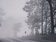 One of William Breen's soft atmospheric new Road series.