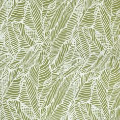 Floral Fabrics | Greenhouse Fabrics Tropical Fabric, Tropical Pattern, Floral Fabric, Floral Prints, Greenhouse Fabrics, Outdoor Fabric, Deco, Fabric Design, Vibrant Colors