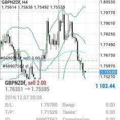 Grafik trading forex trendy
