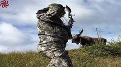 Monster Alaskan Bull Moose hunting. - Giant  MOOSE !!!
