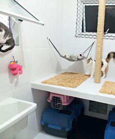 Casinhas de gato para locais pequenos