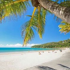Noosa main beach Queensland Australia