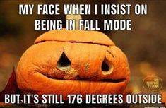 40 Memes for Anyone Who Loves Fall and Is Ready to Get Spooky funnypics funnypictures halloween halloweenmemes fallmemes 793689134314120217 Fall Humor, Fall Memes, Samhain, Mabon, Fall Halloween, Halloween Costumes, Halloween Quotes, Happy Halloween, Halloween Humor