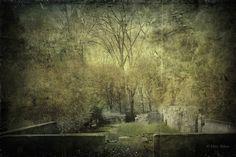 Garden at Maudslay ©  digital image by Mary Baker