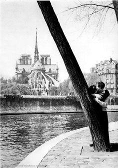 """mimbeau: """" The lovers tree Paris 1956 Patrice Molinard """""""