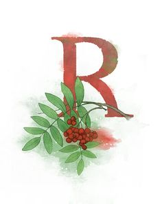 Letter R Art Print, Rowan tree, Nature Theme Alphabet Art Giclee Print
