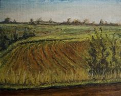 Indiana Farmland: June 2014 plein air --from RachelSteely.com plein air oil painting