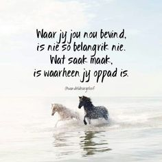 Waarheen jy oppad is. Qoutes, Life Quotes, Afrikaanse Quotes, Goeie Nag, Nighty Night, Religious Quotes, Proverbs, Positive Quotes, Best Quotes