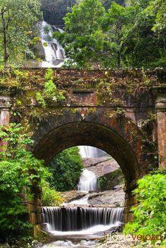 Cascatinha Taunay, no Parque Nacional Floresta da Tijuca,