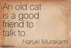Quotes of Haruki Murakami About fool, right, artist, humor ...