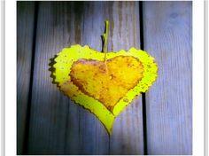 Autumn - leave - Photography Wallpaper ID 1195958 - Desktop Nexus Abstract Free Photography, Autumn Photography, Changing Leaves, Love Photos, Autumn Leaves, Art Girl, Seasons, Abstract, Pretty
