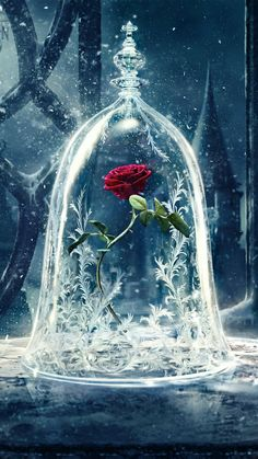 beauty and the beast, rose, and disney kép